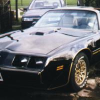 Martyn1981