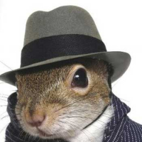 The_squirrell