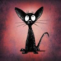 Black_Cat2